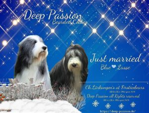 Deep-Passion